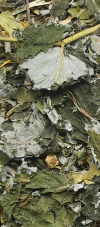 Natural-Vit Suszone zioła dla ŚWINKI MORSKIEJ 70 g Korona Natury