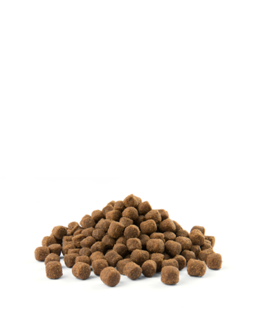 VERSELE-LAGA Opti Life Adult Digestion Mini 7,5 kg - karma dla dorosłych psów ras małych i miniaturowych z wrażliwym układem pokarmowym ( jagnięcina )