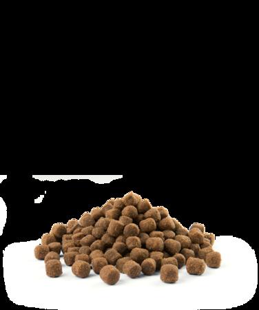VERSELE-LAGA Opti Life Adult Skin Care Mini 2,5 kg - karma dla dorosłych psów ras małych i miniaturowych z wrażliwą skórą ( łosoś )