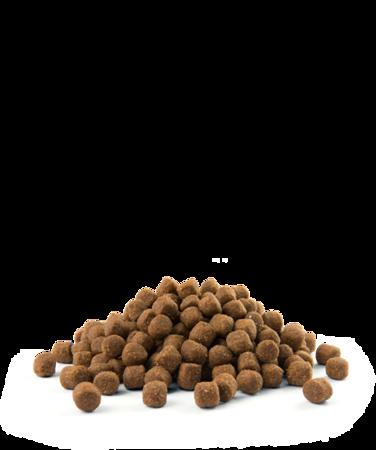 VERSELE-LAGA Opti Life Puppy Medium 2,5 kg - karma dla szczeniąt ras średnich ( drób )